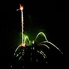 Fireworks - Ostrich by Paul Gitto