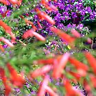 Flowers - Caribbean Island - 2 by ouellettep