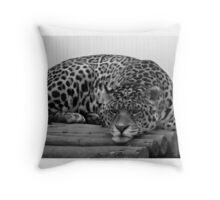 Bad Mood Cat Throw Pillow