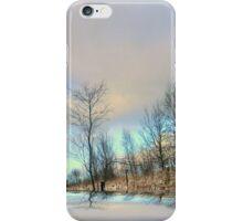 Winter Beauty ! iPhone Case/Skin
