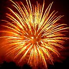 Fireworks - Sea Anemone by Paul Gitto