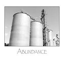 abundance Photographic Print