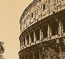 Colosseum - Rome  by Andrea Mazzocchetti