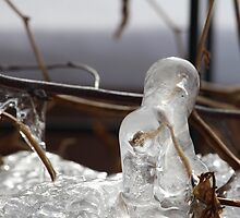Ice Formation 3 by Dana Davis