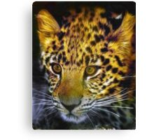 East African leopard Canvas Print