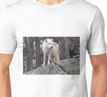 Arctic wolf on hunt  Unisex T-Shirt