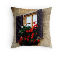 Castellini de Chianti,Italy Throw Pillow