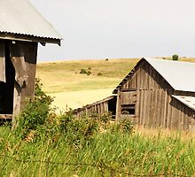 The Old Farmstead by eltotton