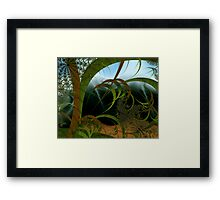 First Breath of Winter - high res Framed Print