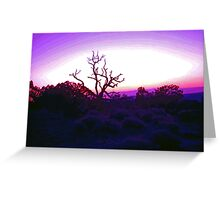 Sunset through Silhouetted Tree in Desert (2) Greeting Card