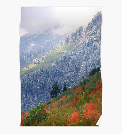 Mt. Timpanogos w/ Fall Color and Fresh Snow - 834 views Poster