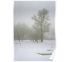 Foggy Morning Landscape (2) Poster