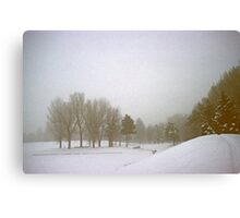 Foggy Morning Landscape (3) Canvas Print