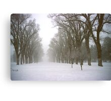 Foggy Morning Landscape (4) Canvas Print