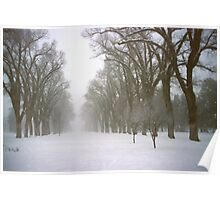 Foggy Morning Landscape (4) Poster