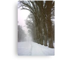 Foggy Morning Landscape (5) Canvas Print