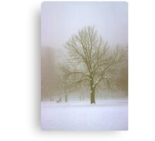 Foggy Morning Winter Landscape (7) Canvas Print
