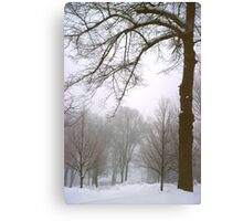 Foggy Morning Landscape (10) Canvas Print