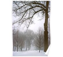 Foggy Morning Landscape (10) Poster