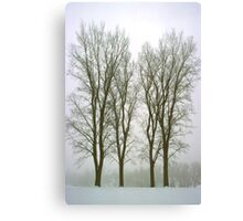 Foggy Morning Winter Landscape (20) Canvas Print
