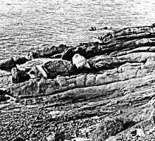 Island Caprera: sea and rock by Giuseppe Cocco
