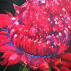 Waratah by Lorna Gerard