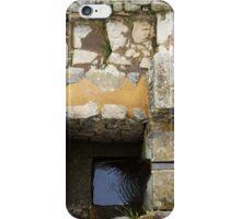 Machu Picchu Fountain iPhone Case/Skin