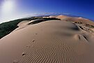 Take nothing but photos - Leave nothing but footprints by Travis Easton