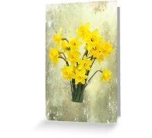 Daffodils in springtime Greeting Card