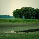 Summer Mohawk River by jenndes