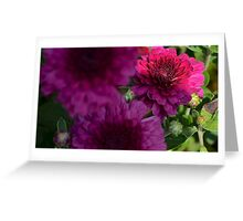 purple flower low key  Greeting Card