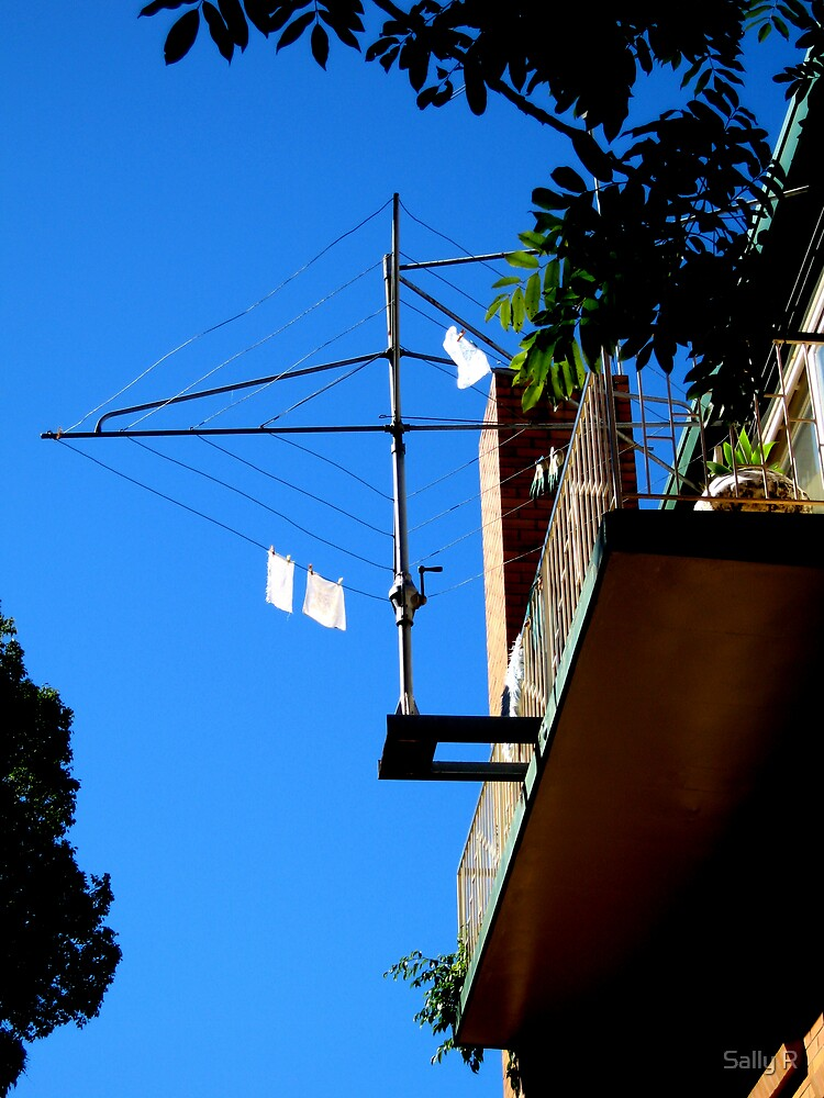 The Elevation of an Australian Icon by Sally R