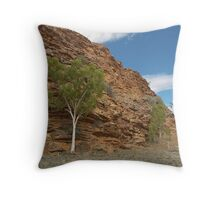Knowledge, Alice Springs,Central Australia. Throw Pillow