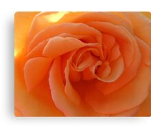 Peach Treat Canvas Print