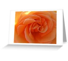 Peach Treat Greeting Card