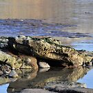 Large Rocks Uncovered By The Tide by lynn carter