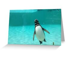 The flying penguin Greeting Card