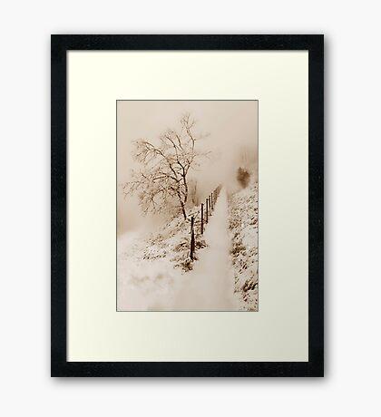 Sleeping Nature Framed Print