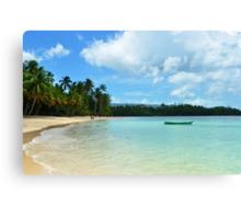 Caribbean beaches  Canvas Print