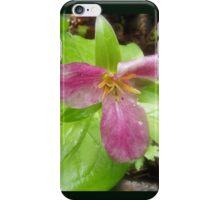 purple trillium #2 iPhone Case/Skin