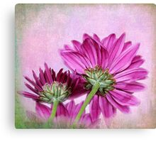 In Reverse Canvas Print