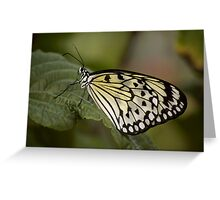 Pollen Lover Greeting Card