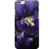 mini- purple iris iPhone Case/Skin