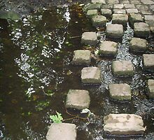 Stepping stones by Martilena