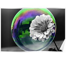 B&W Flower in a bubble Poster