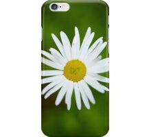Wild yellow daisies iPhone Case/Skin