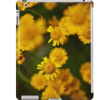 Wild yellow daisies iPad Case/Skin