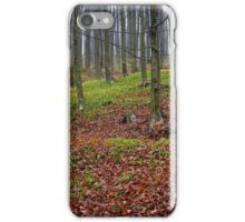 Enchanted forest in autumn iPhone Case/Skin
