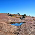 Enchanted Rock  by venny