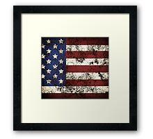American I Framed Print